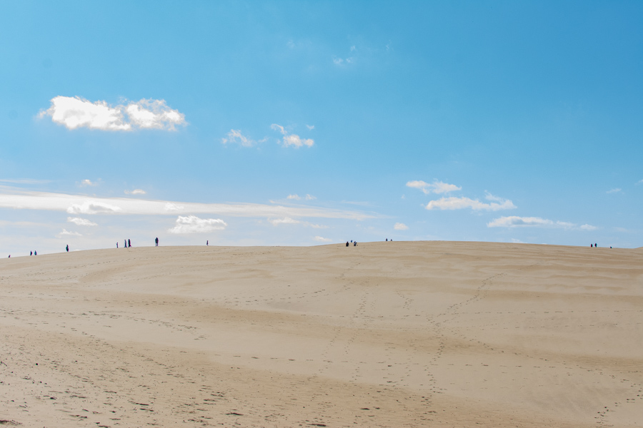 Visitors walking on the sand dunes at Jockey's RIdge State Park.